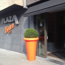 plaza12